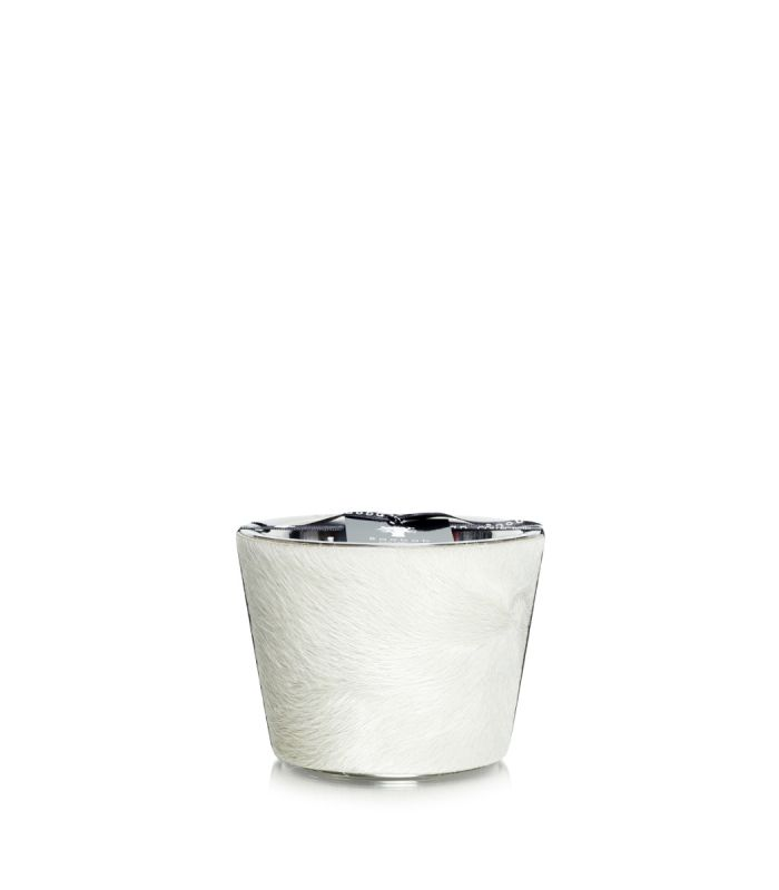 Scented Candles Baobab Collection - White Owl Max 10