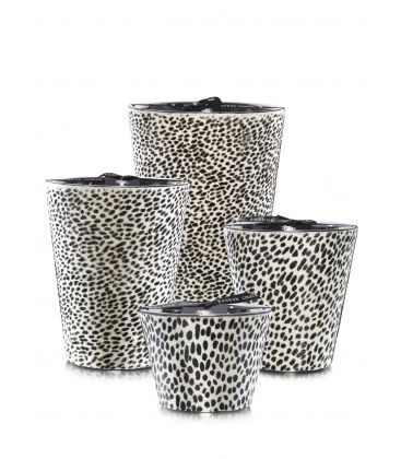Scented Candles Baobab Collection - Ghepardino