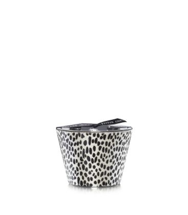 Scented Candles Baobab Collection - Ghepardino Max 10