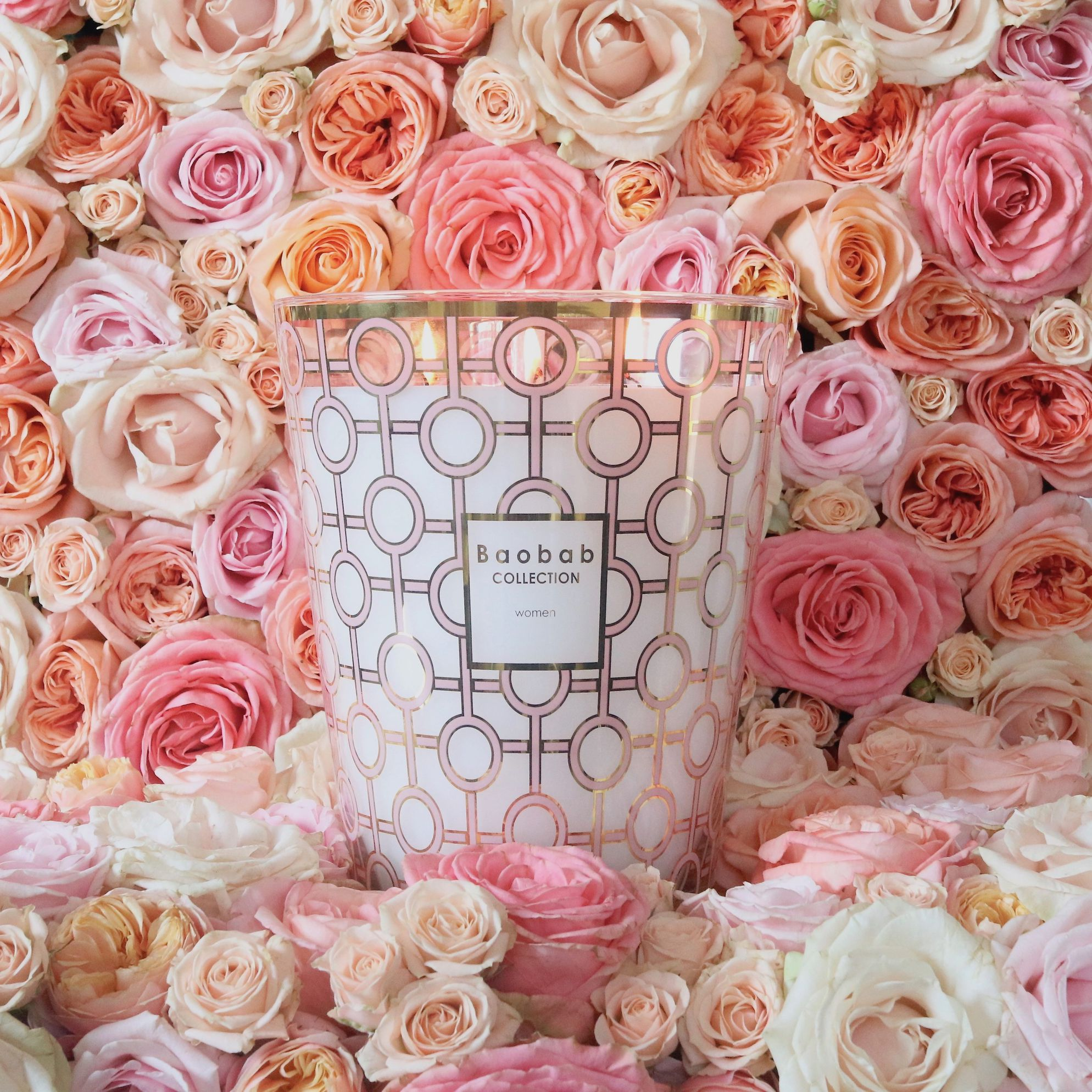 women-roses-baobab-collection-big-against-breast-cancer-3